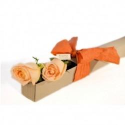 Dúo de rosas