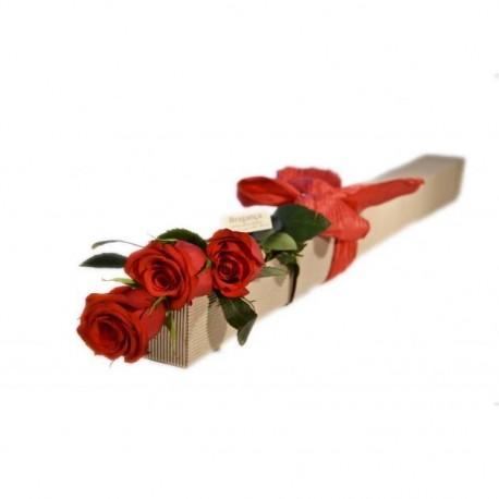 Trío de rosas