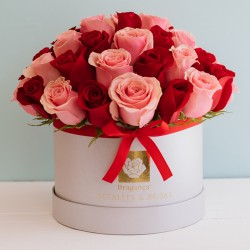 Valentín Solo Rosas